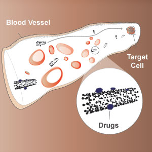 Drug Delivery and Detection